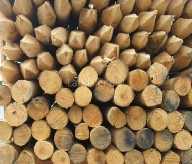 Chestnut Stakes 2m/10-12cm